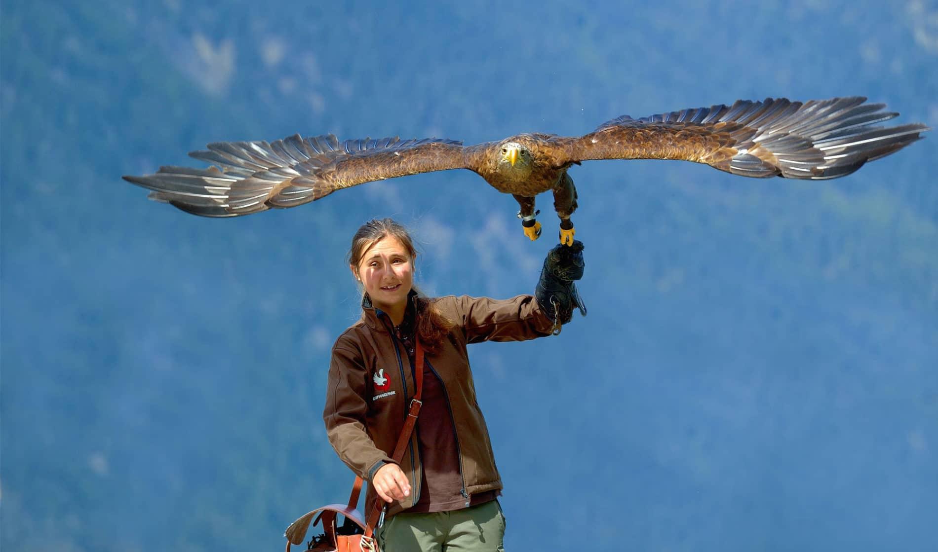 Falknerin mit Adler
